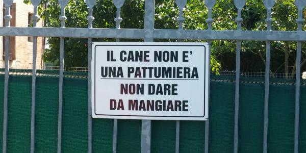 CANE PATTUMIERA OK