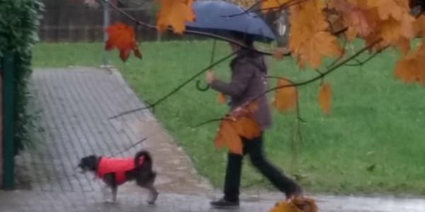 sotto-pioggia-2
